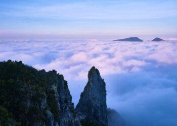 Ilustrasi alam (sumber: yufidia.com)